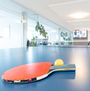 dasistweb office, table tennis